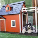 Como hacer una casa para perro en 6 simples pasos 2020 FACIL