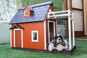 como hacer una casa de perro 2020