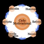 El ciclo motivacional